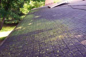 Depietro Roofing Inc Roofing Done Right